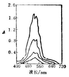 KMnO4液的吸收光谱曲线
