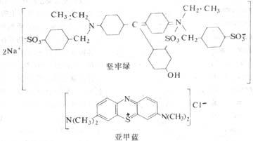 坚牢绿(酸性染料)与亚甲蓝(碱性染料)的化学结构及其染色反应示意