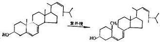 麥角甾醇 維生素D2
