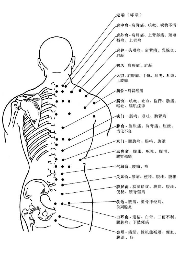 背部穴位和穴位功能