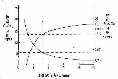 肺泡氧和二氧化碳分压与肺泡通气量的关系