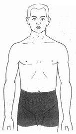 腹股溝和陰囊部手術