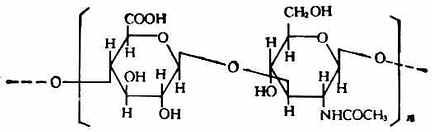 β-D-葡萄糖醛醛酸 N-乙醯基-D-氨基葡萄糖