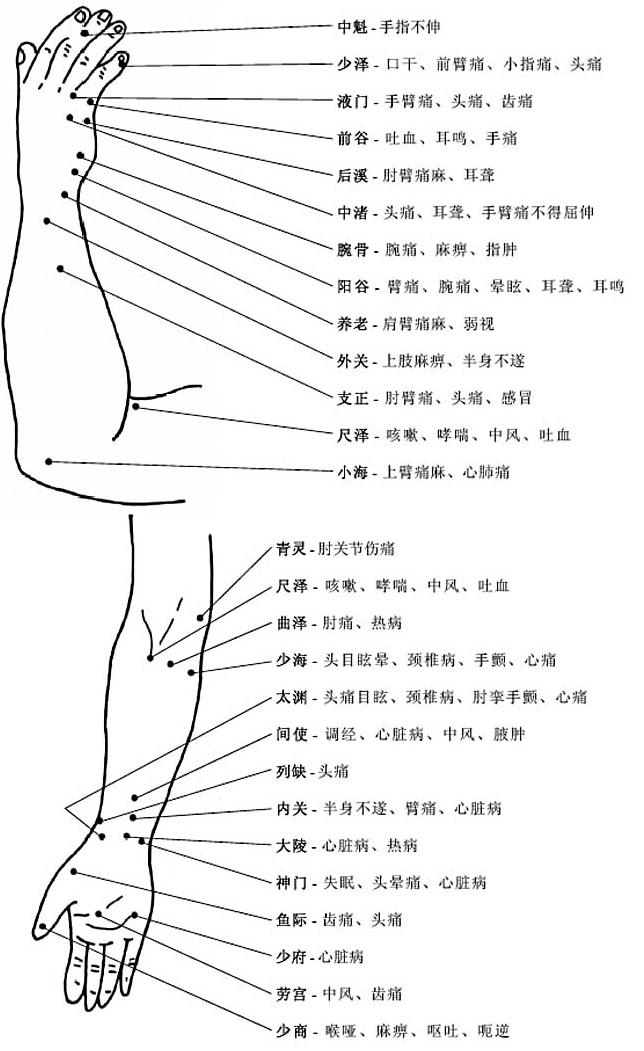 上肢穴位和穴位功能