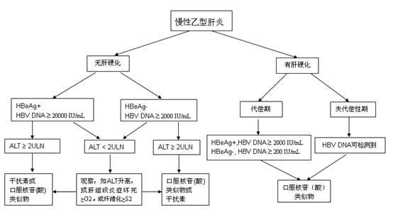 慢性乙型肝炎治療一般流程圖