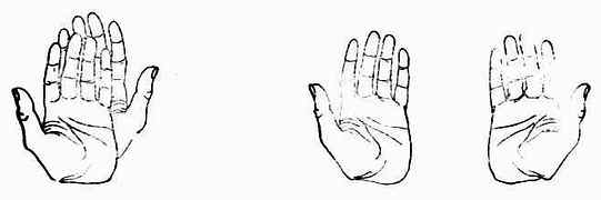 左:左、右手不能重合 左手的镜象是右手