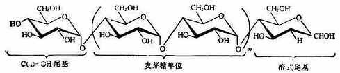 糖澱粉的結構