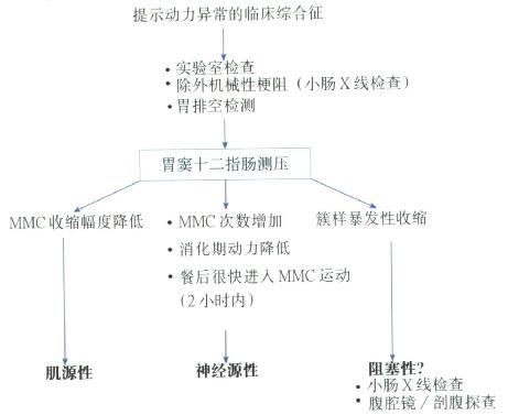动力异常临床综合征诊断程序图