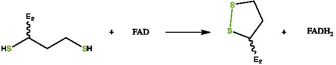 文件:BCKDC catalytic mechanism step 4.png