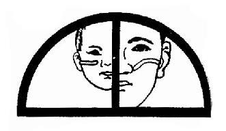 成人与儿童咽鼓管的比较