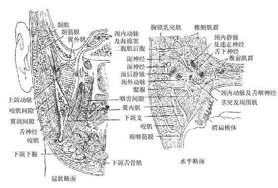 Gm7c7b5f.jpg
