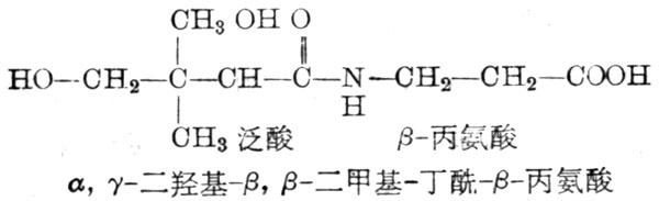 泛酸分子式