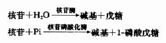 Gra7dkf2.jpg