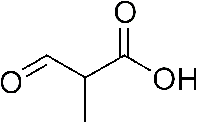 File:2-methyl-3-oxopropanoic acid.png
