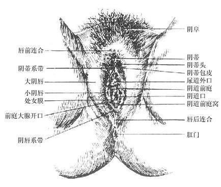 Gm79wv0b.jpg