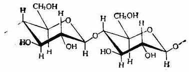 纖維素的結構