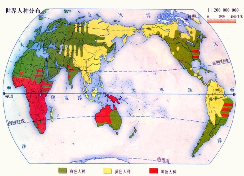 世界人种分布图.jpg