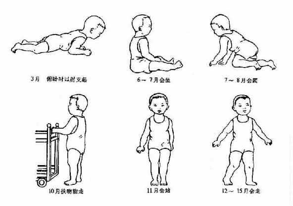 乳幼兒運動的發育