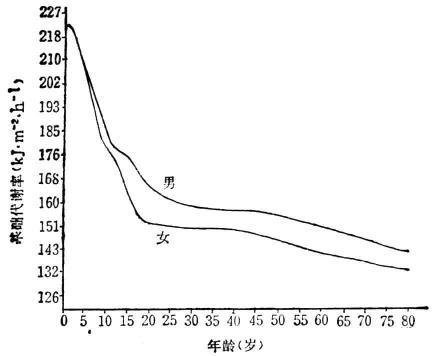 不同性别与不同年龄的正常基础代谢率