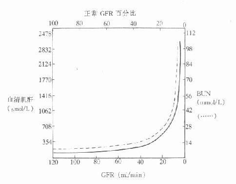 肾小球滤过率与血肌酐、尿素浓度的关系