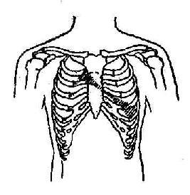 二尖瓣關閉不全及主動脈瓣狹窄收縮期雜音示意圖