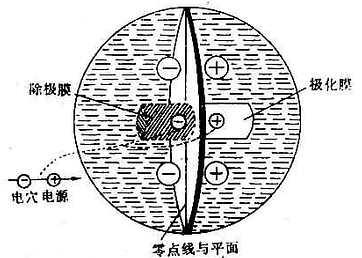 电位在容积导电体内的正负电场示意图