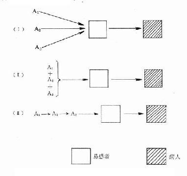 病因(A1、A2、A3)对机体的三种作用方式示意图