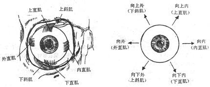Gm7c7pc1.jpg