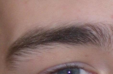 File:Black eyebrow.jpg