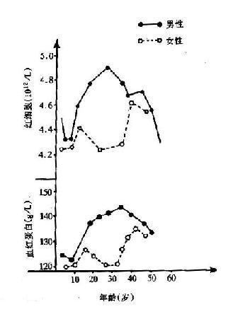 红细胞和血红蛋白的生理变化曲线