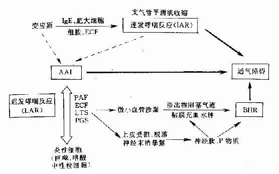 电路 电路图 电子 设计 素材 原理图 556_347