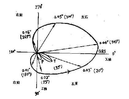 横面向量图的基本图形