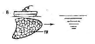 正常人体组织与病理组织反射规律