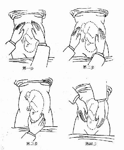腹部触诊手法
