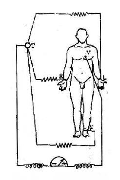加压单极肢体导联的连接方式