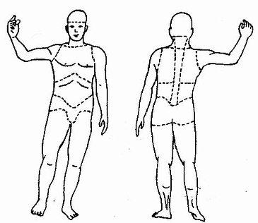 人体损伤部位划分示意图