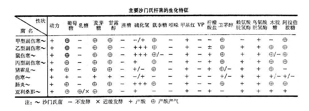 主要沙门氏杆菌的生化特征表