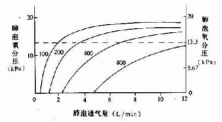 不同氧耗量时肺泡通气量与肺泡氧分压的关系