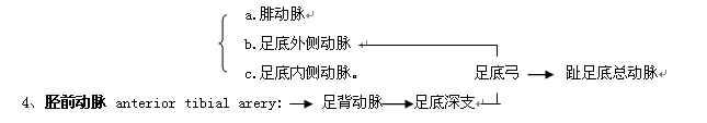 Glp2xbzx.jpg