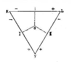 标准导联的导联轴