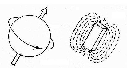 质子带正电荷