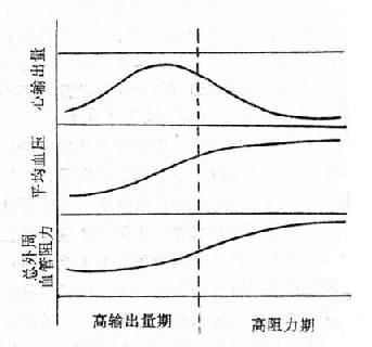 原发性高血压时血液动力学的改变