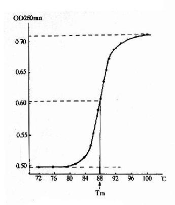 核酸的解链曲线