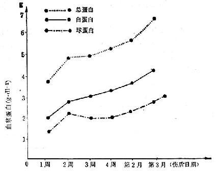 5例(烧伤面积55~70/Ⅲ°40~70%)烧伤后血浆蛋白的变化