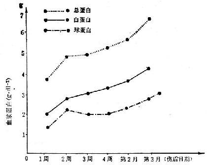 15例(烧伤面积70~90/Ⅲ°40~90%)烧伤后血浆蛋白的变化