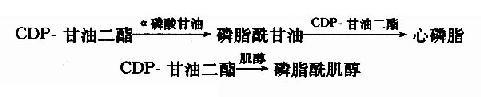 Gra3q7wr.jpg