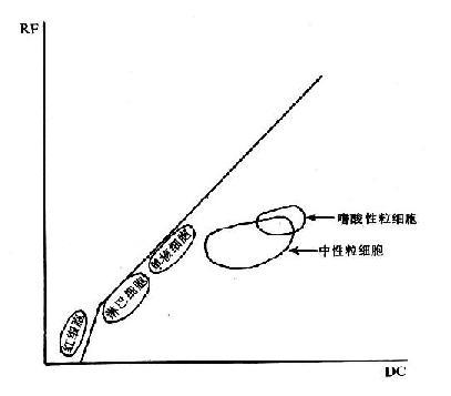 電阻抗與射頻聯合檢測白細胞分布圖