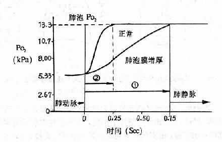 正常人与肺泡膜增厚时肺循环中血红蛋白氧合的时间过程