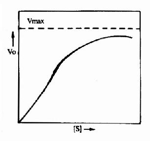 变构酶的底物浓度曲线