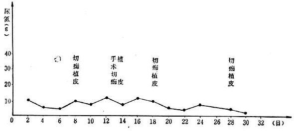 烧伤总面积97/Ⅲ°45%尿氮排出量的变化